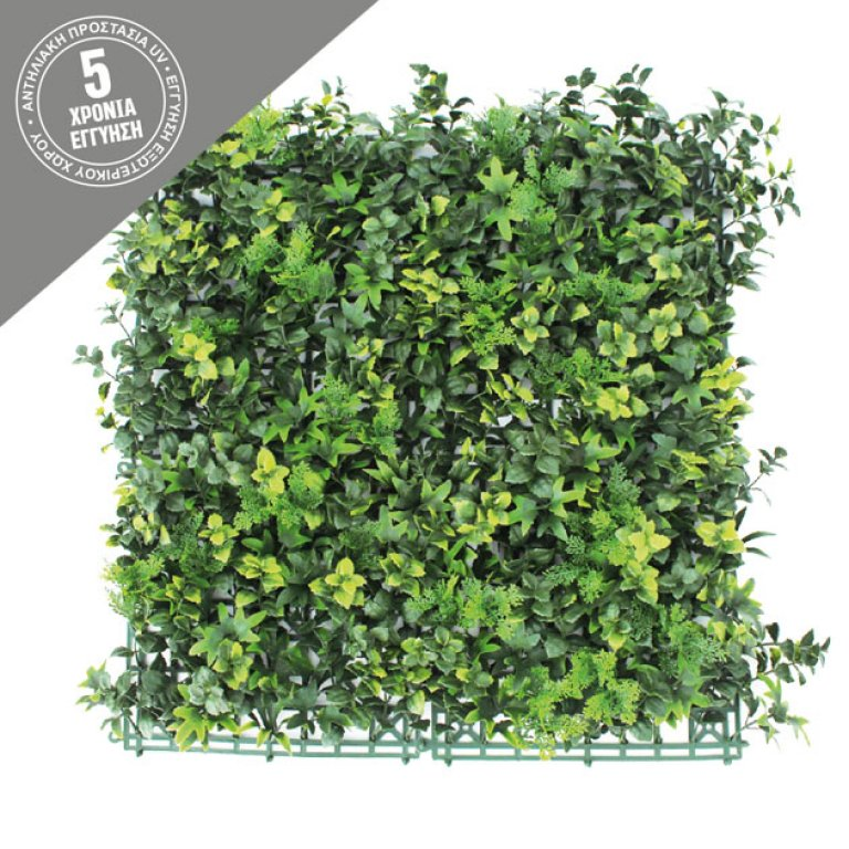 VERTICAL GARDEN WITH FERN 50x50CM
