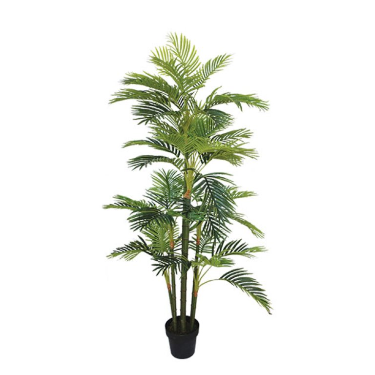 ARTIFICIAL AREKA TREE REAL TOUCH 170CM