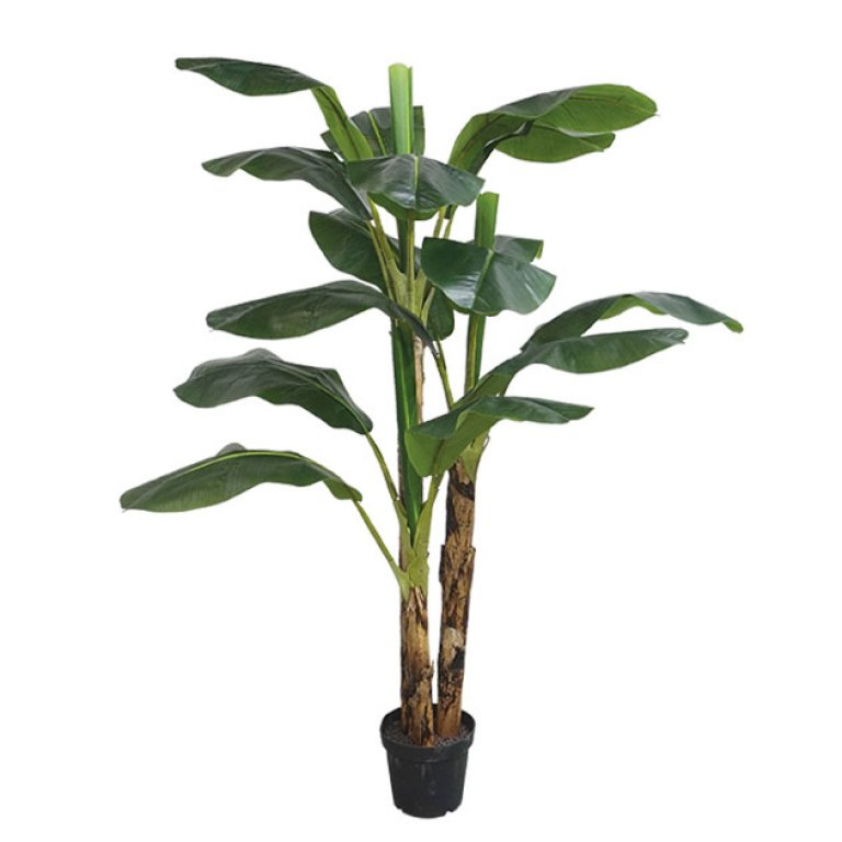 ARTIFICIAL BANANA TREE REAL TOUCH 188CM