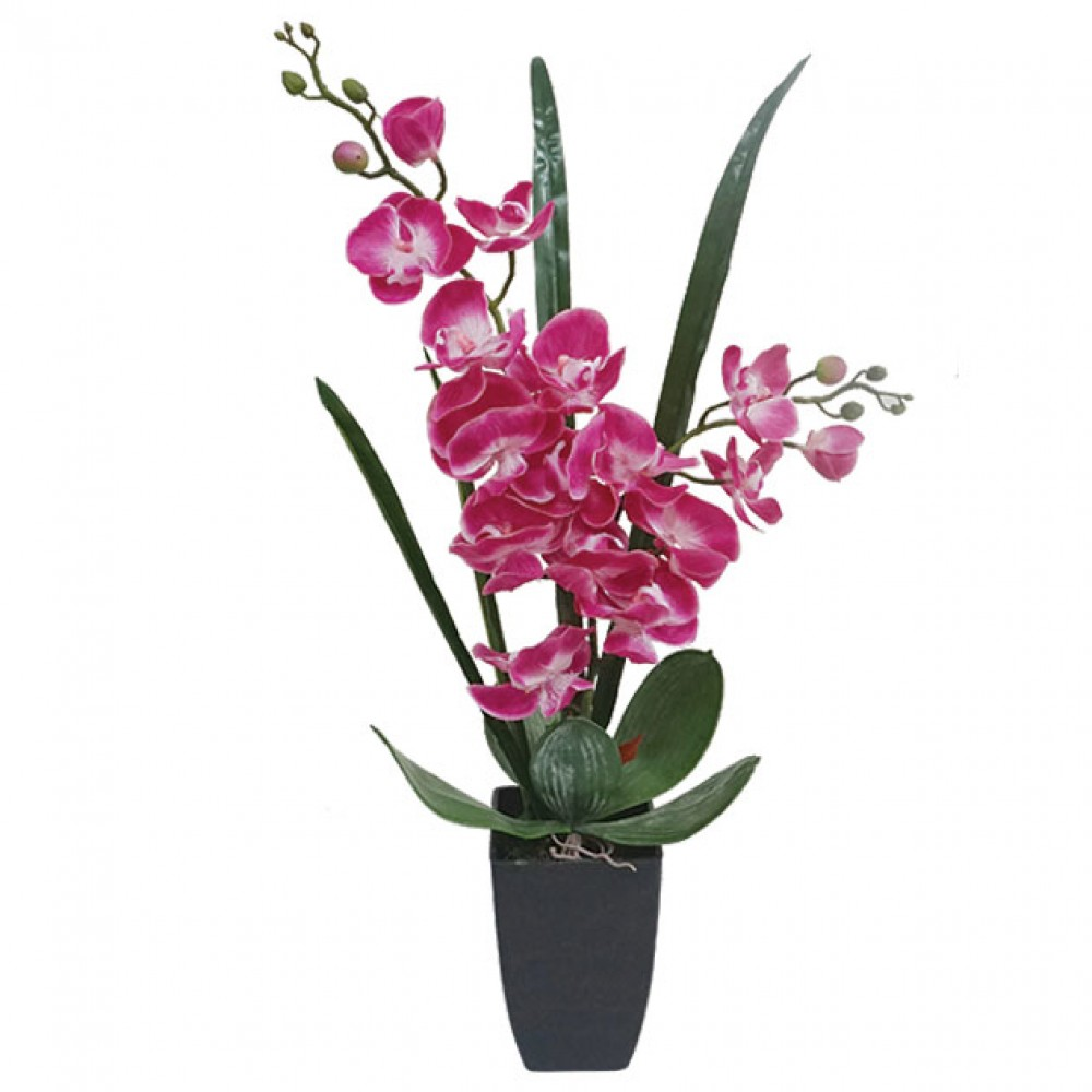 ORCHID REAL TOUCH IN FLOWER POT FUCHSIA 60CM