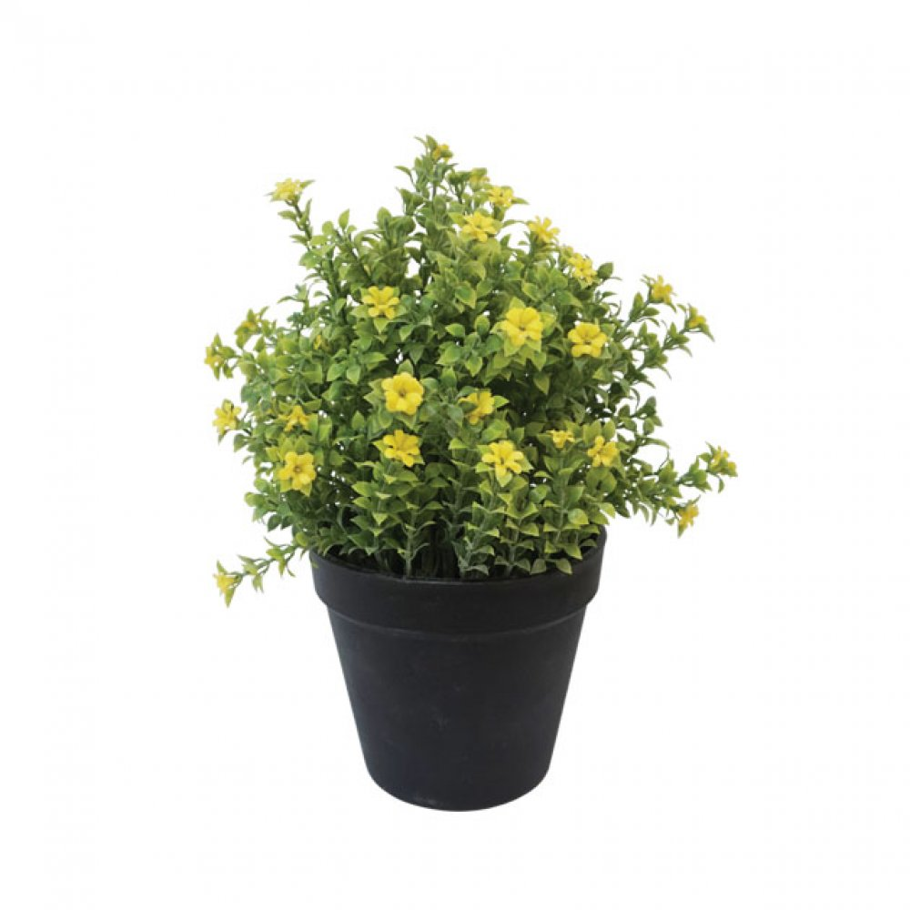 GREENERY IN FLOWER POT WITH YELLOW FLOWER 24CM