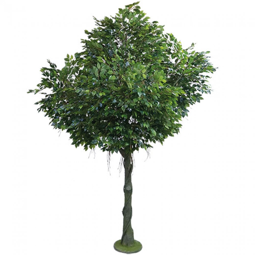 ARTIFICIAL FICUS BENJAMIN TREE REAL TOUCH 300CM