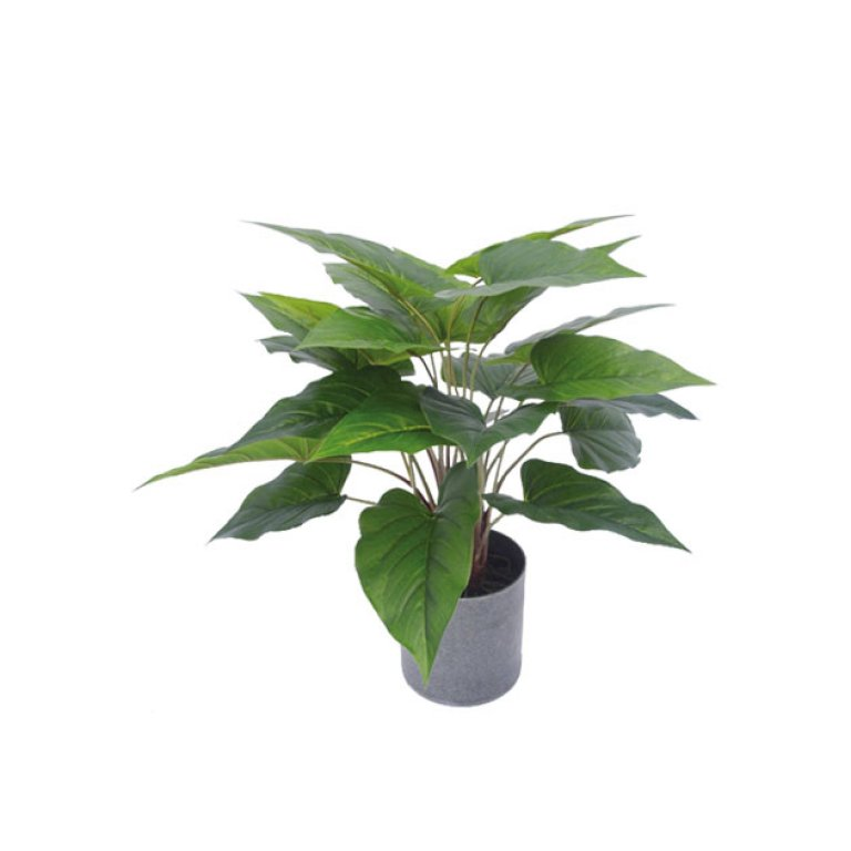 ARTIFICIAL ANTHURIUM PLANT GREEN 45CM