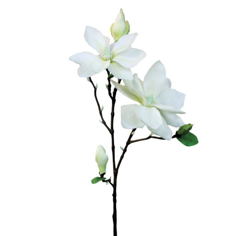 ARTIFICIAL MAGNOLIA BRANCH EKΡOY 83CM
