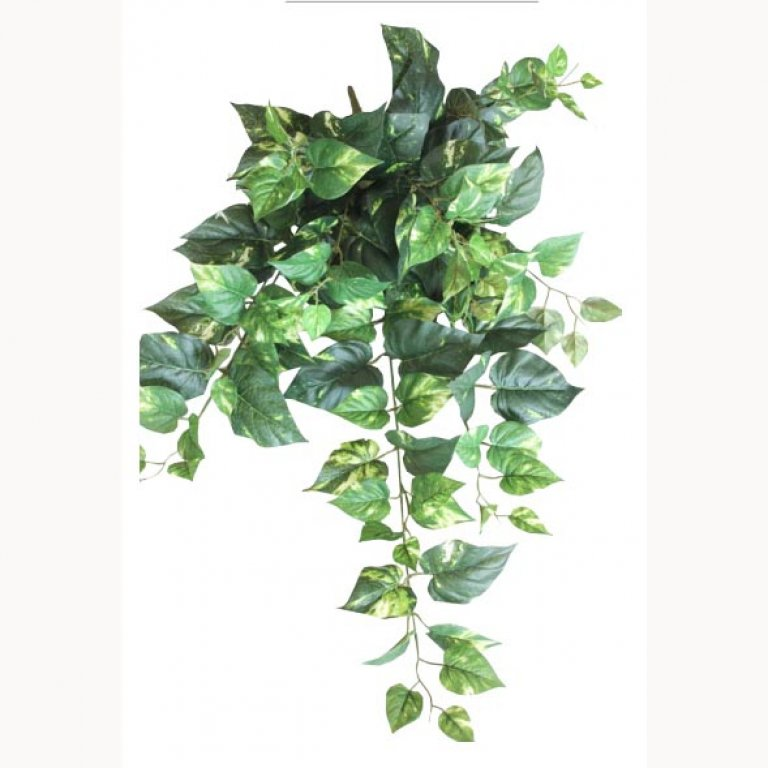 ARTIFICIAL HANGING POTHOS TWO COLOURS 90CM
