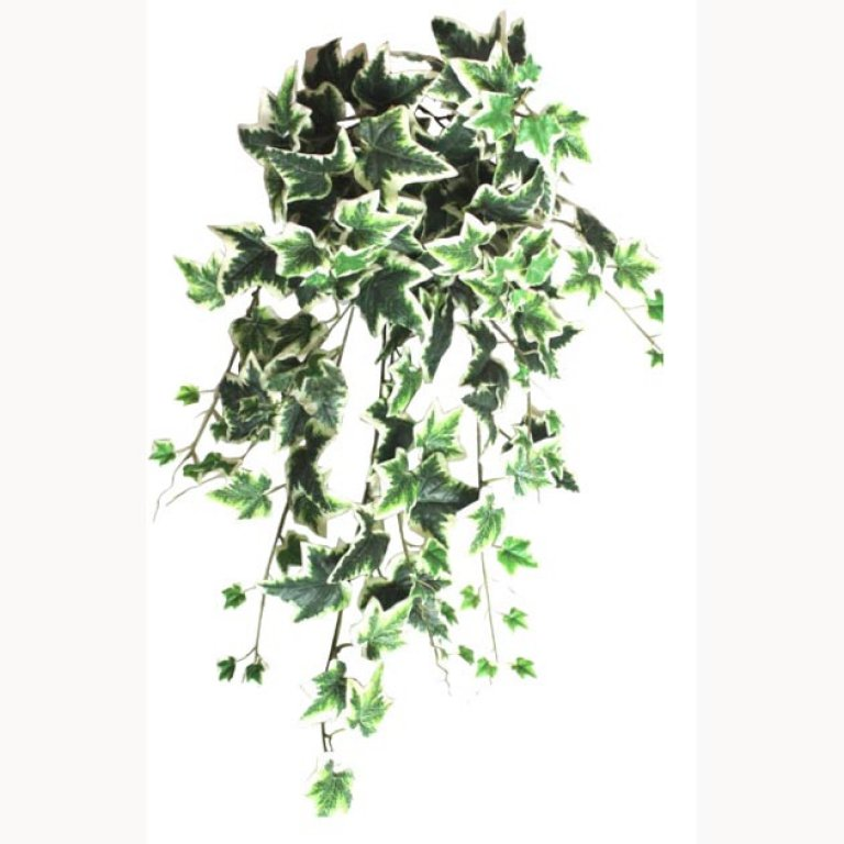 ARTIFICIAL HANGING IVY TWO COLOURS 90CM