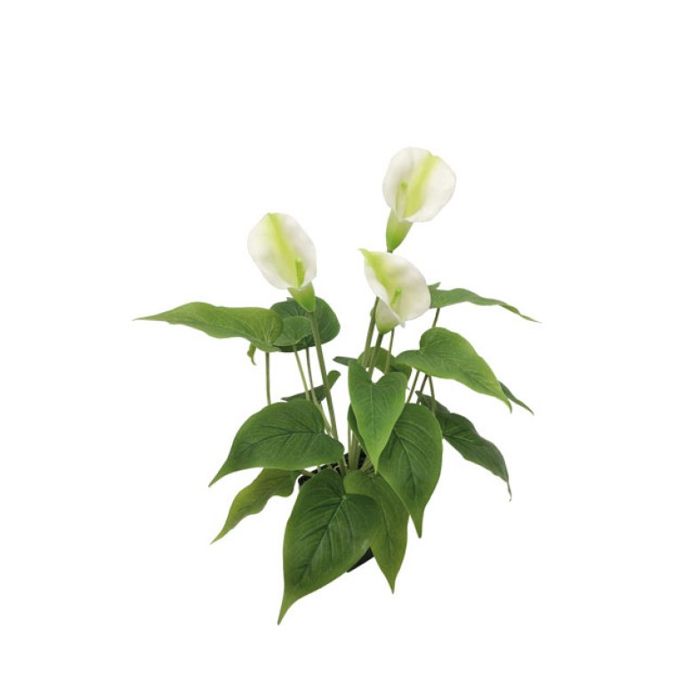 ARTIFICIAL CALLAS PLANT REAL TOUCH CREAM 43CM