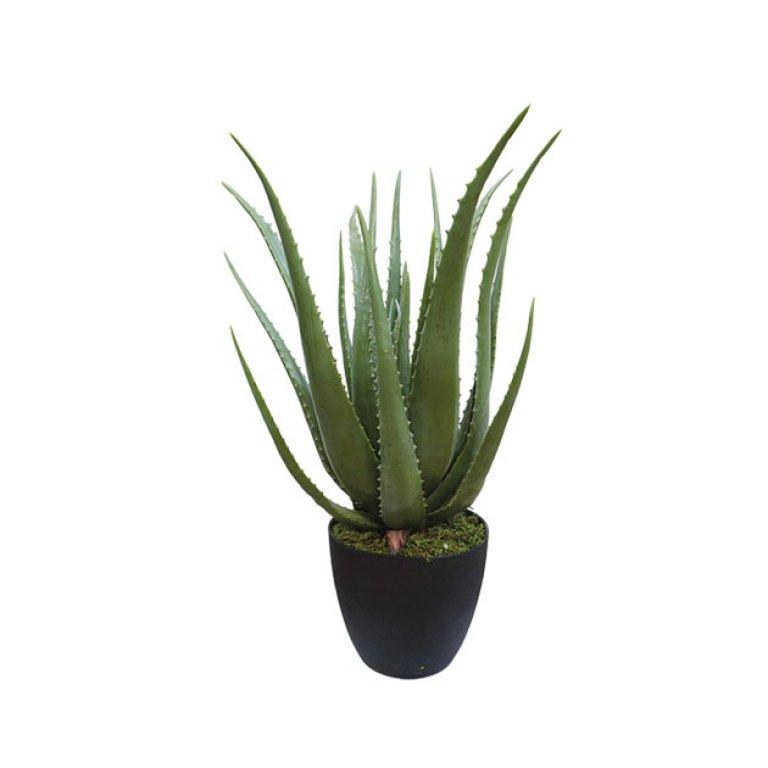 ARTIFICIAL ALOE PLANT 70CM