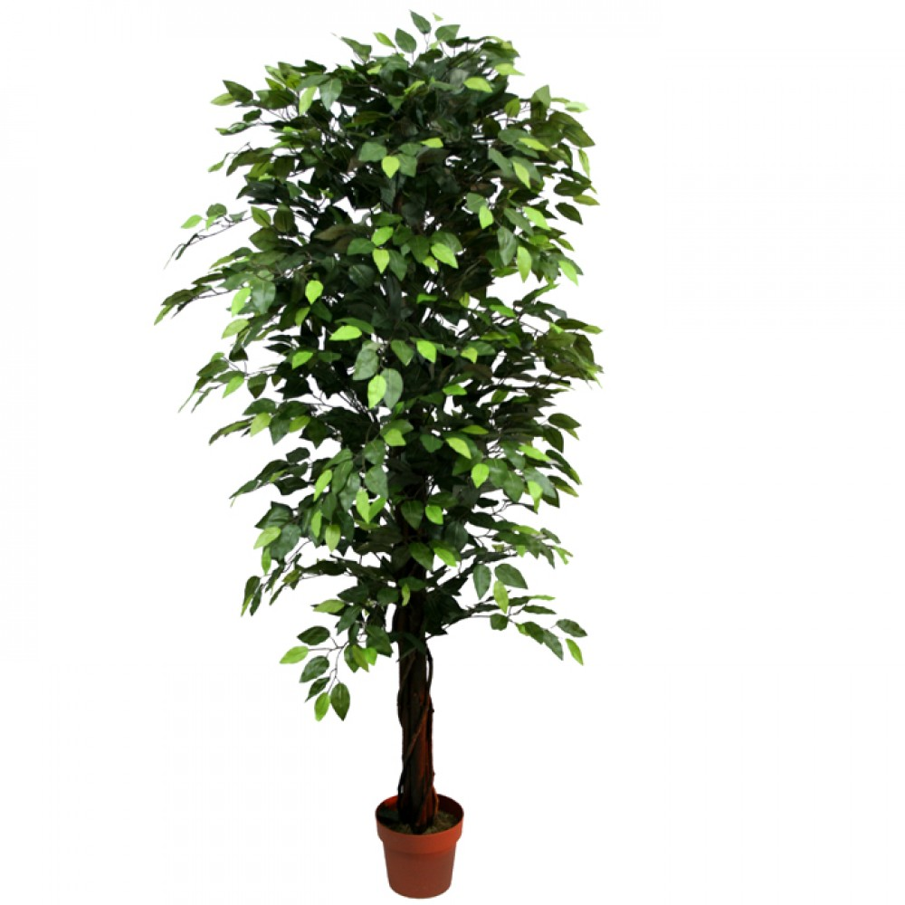 ARTIFICIAL FICUS BENJAMIN TREE GREEN 180CM