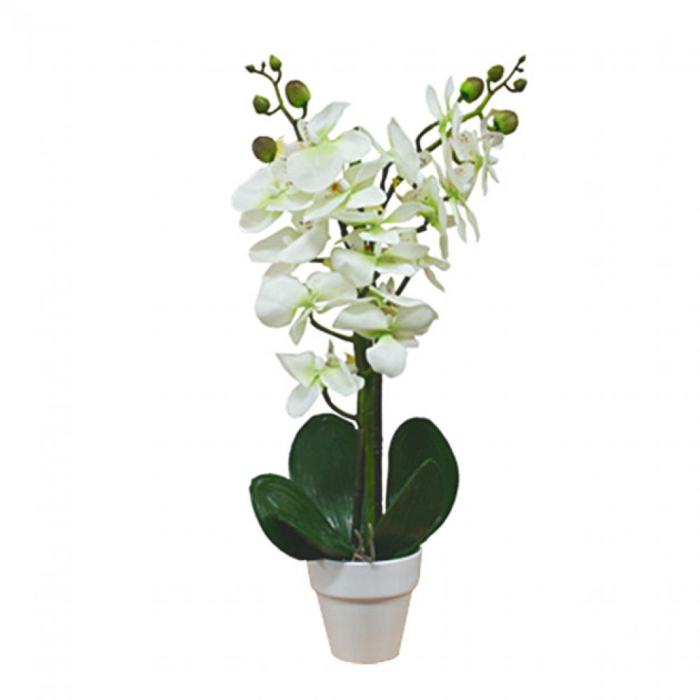 ORCHID IN FLOWER POT CREAM 46CM