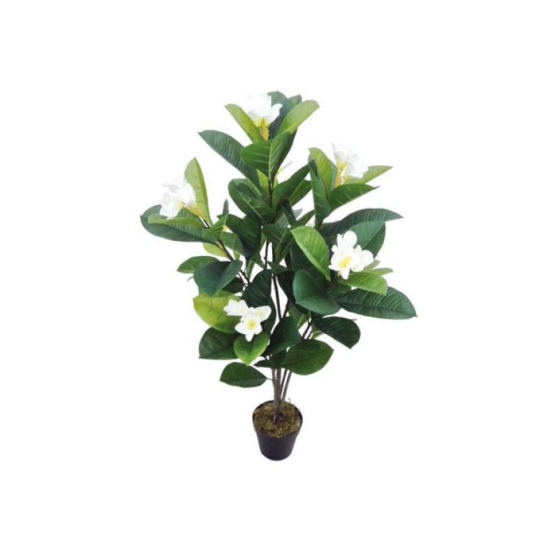 ARTIFICIAL MAGNOLIA PLANT CREAM 107CM