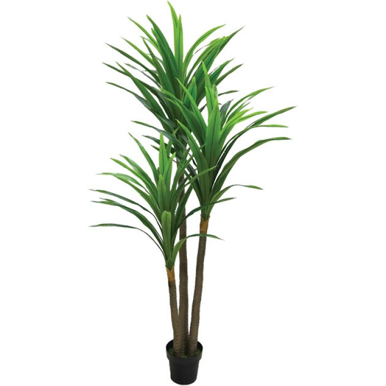ARTIFICIAL YUCCA TREE REAL TOUCH 200CM