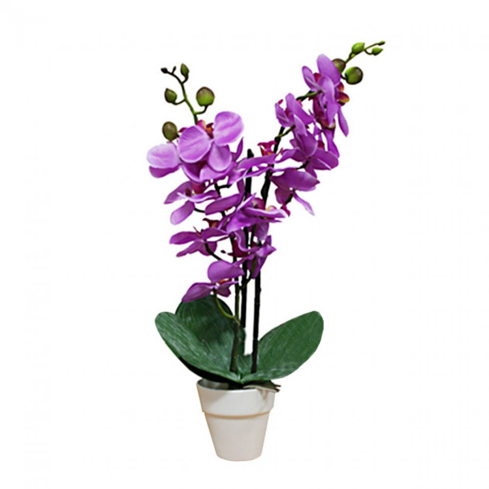 ORCHID IN FLOWER POT PURPLE 46CM