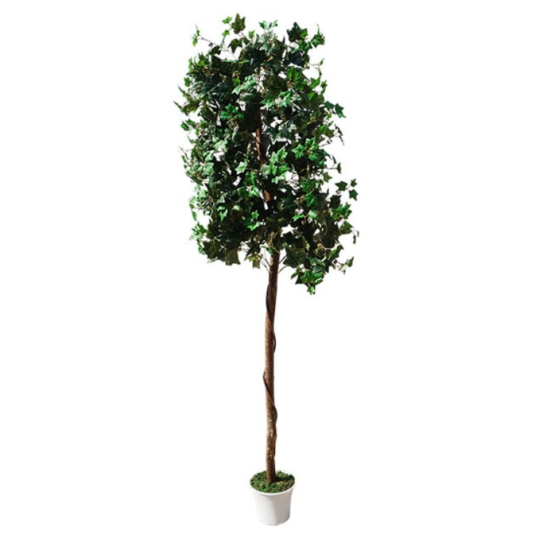 ARTIFICIAL IVY TREE 210CM