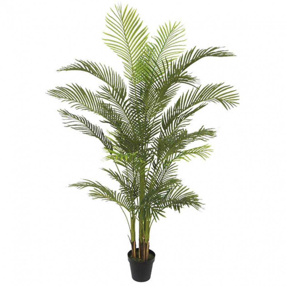 ARTIFICIAL AREKA TREE REAL TOUCH 210CM