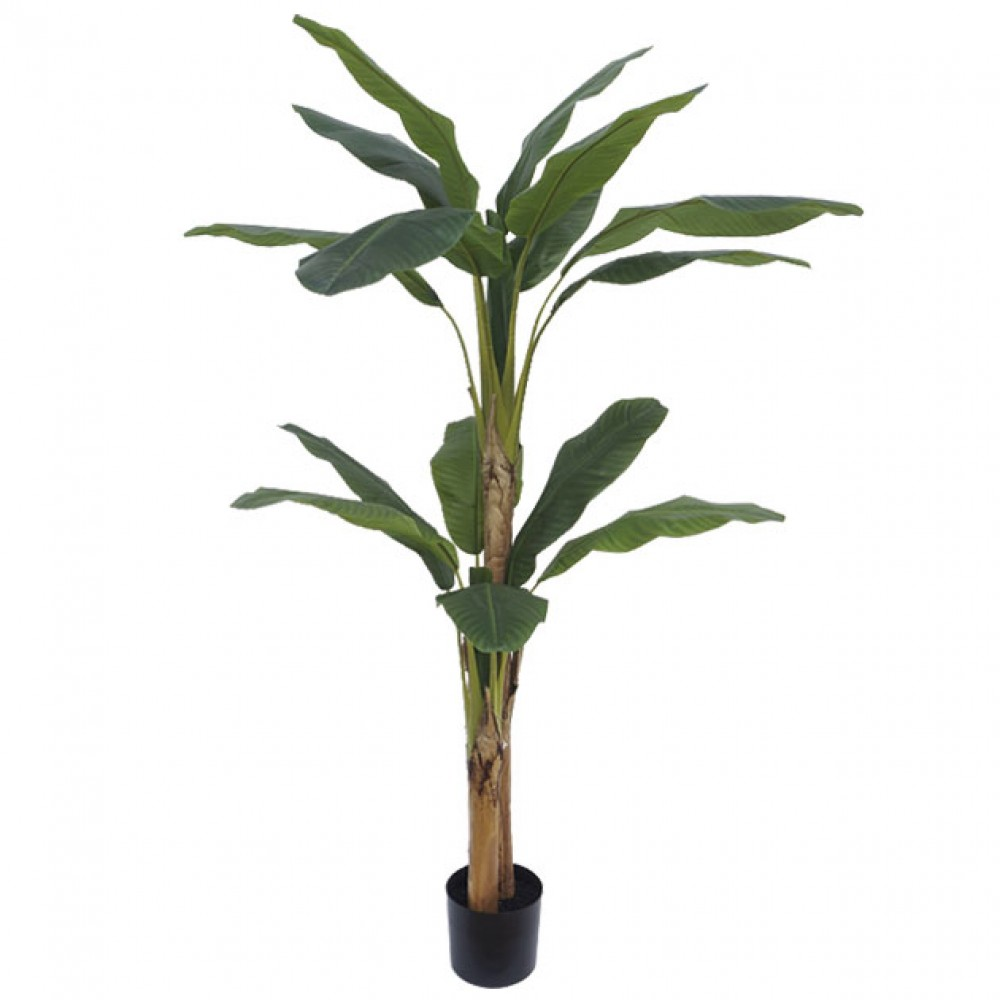 ARTIFICIAL BANANA TREE REAL TOUCH 190CM