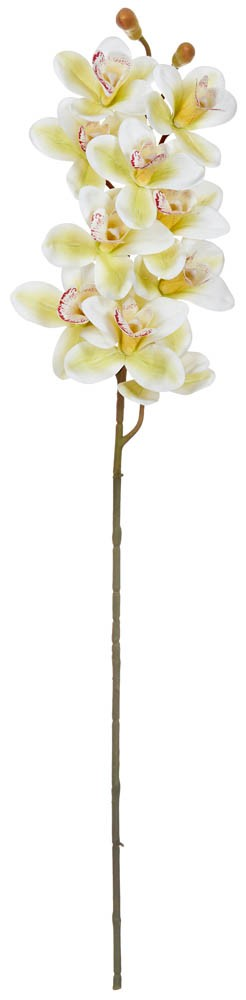 ARTIFICIAL ORCHID BRANCH REAL TOUCH CREAM 85CM