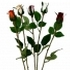 ARTIFICIAL ROSE BRANCH (5 COLOURS) 62CM