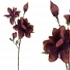 ARTIFICIAL MAGNOLIA BRANCH PASTEL BURGUNDY 81CM