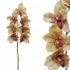 ARTIFICIAL CYMBIDIUM ORCHID BRANCH GREEN REAL TOUCH 62CM