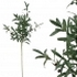 ARTIFICIAL OLIVE BRANCH 105CM