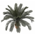 ARTIFICIAL CYCAS TREE 110CM