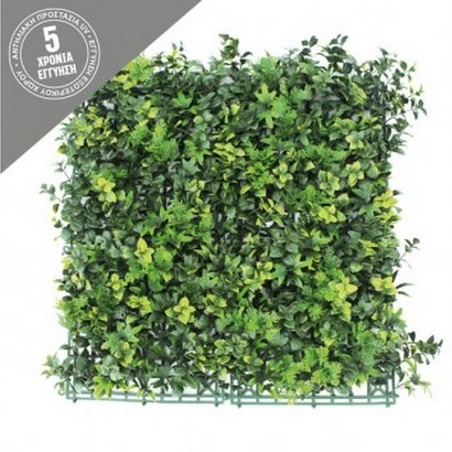 VERTICAL GARDEN WITH FERN 50x50CM - 1
