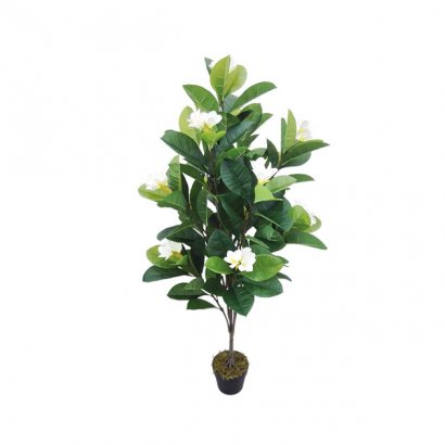 ARTIFICIAL MAGNOLIA PLANT CREAM 140CM - 1