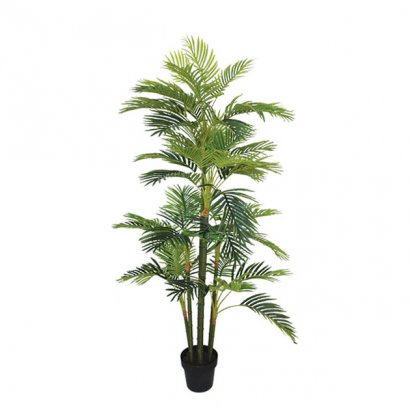 ARTIFICIAL AREKA TREE REAL TOUCH 170CM - 1