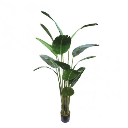 ARTIFICIAL STRELITZIA TREE 180CM - 1