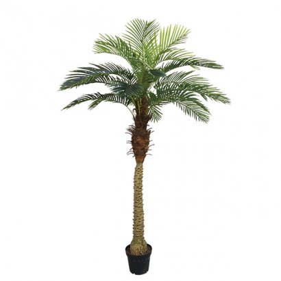 ARTIFICIAL PALM TREE REAL TOUCH 210CM