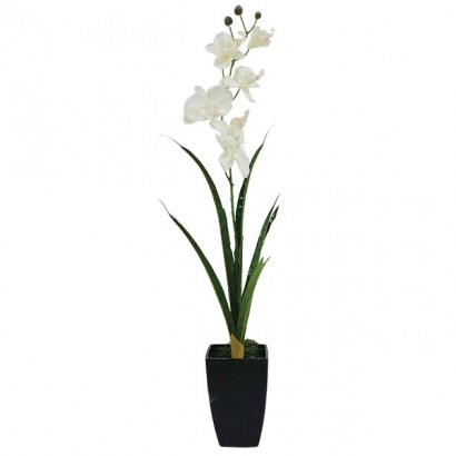 ORCHID IN FLOWER POT CHAMPAGNE 73CM - 1