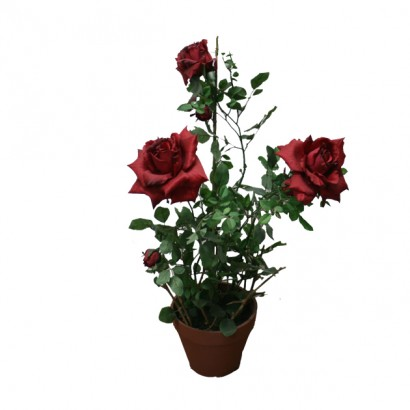 ARTIFICIAL ROSE TREE RED 68CM - 1