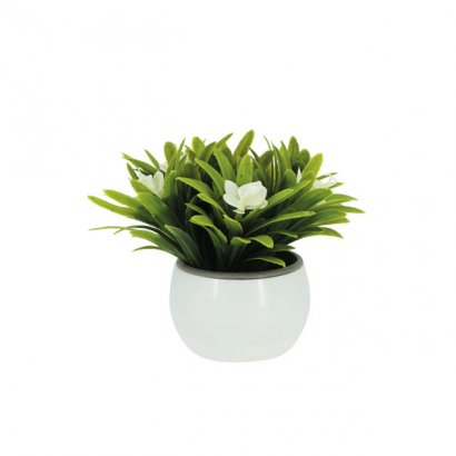 GREENERY IN FLOWER POT WITH CREAM FLOWER 13CM