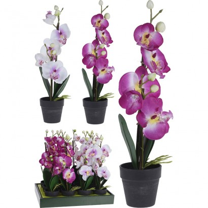 ORCHID IN FLOWER POT (2 COLOURS) 14x38CM - 1