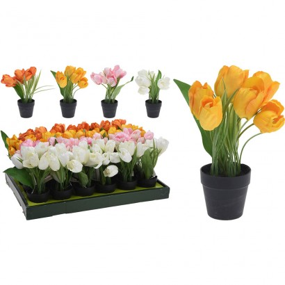 TULIP IN FLOWER POT (4 COLOURS) 20CM - 1