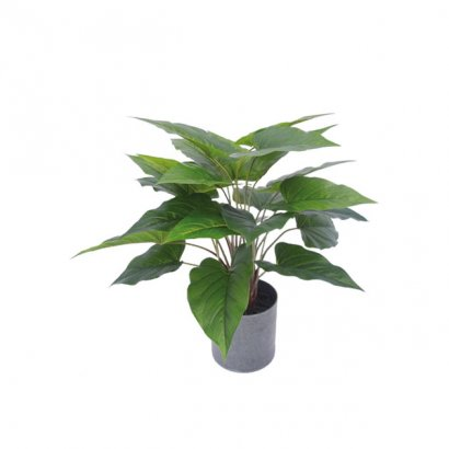 ARTIFICIAL ANTHURIUM PLANT GREEN 45CM - 1