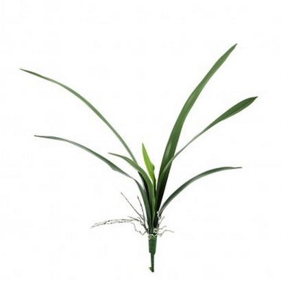 ARTIFICIAL ORCHID LEAF BRANCH REAL TOUCH 62CM - 1