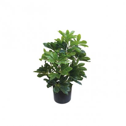 ARTIFICIAL SCHEFFLERA PLANT REAL TOUCH 61CM - 1