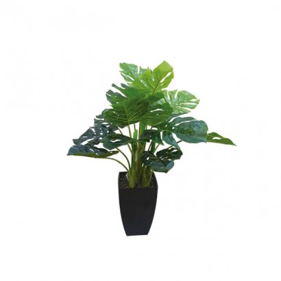 ARTIFICIAL SHORTFIELD PLANT REAL TOUCH 65CM - 1