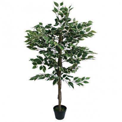 ARTIFICIAL FICUS BENJAMIN TREE TWO COLOURS 120CM - 1