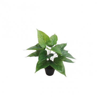 ARTIFICIAL ANTHURIUM PLANT GREEN 30CM - 1