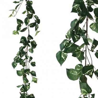 ARTIFICIAL POTHOS GARLAND TWO COLOURS 170CM - 1