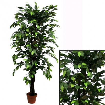 ARTIFICIAL FICUS BENJAMIN TREE GREEN 150CM - 1