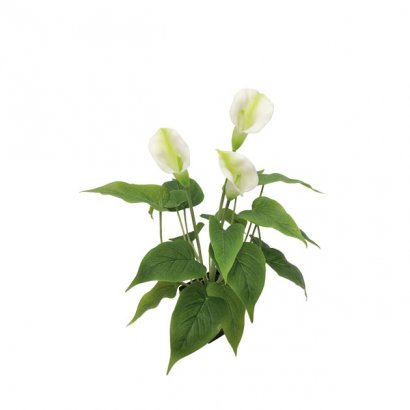 ARTIFICIAL CALLAS PLANT REAL TOUCH CREAM 43CM - 1