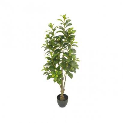 ARTIFICIAL PACHIRA TREE 130CM - 1