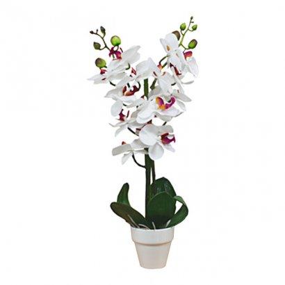 ORCHID IN FLOWER POT WHITE 46CM - 1