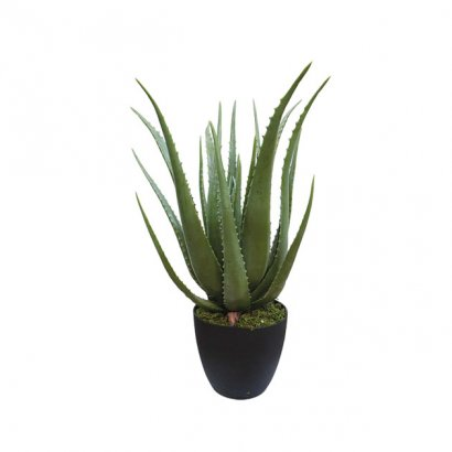 ARTIFICIAL ALOE PLANT 70CM - 1