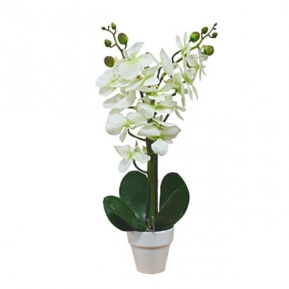ORCHID IN FLOWER POT CREAM 46CM - 1