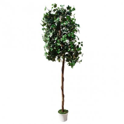 ARTIFICIAL IVY TREE 210CM - 1